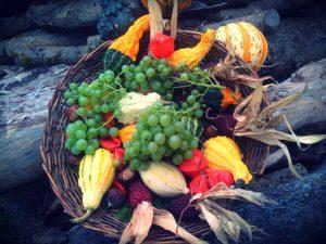 menucka-magazin-farby-na-tanieri-top-paprika-tekvica-hrozno-zelenina-ovocie a zelenina