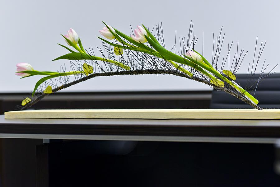 Menucka-magazin-jaroslava-basistova-rozhovor Jaroslava Bašistová kvetinová dekorácia floristka