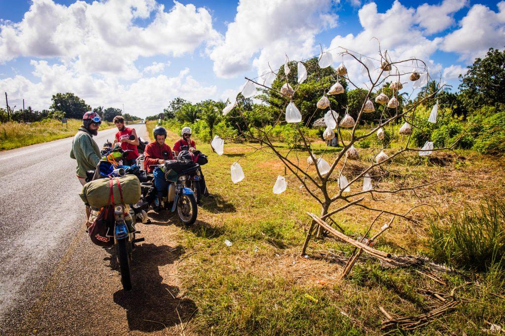 Afrika na pionieri: Čo skutočne nečakali boli napríklad kešu oriešky na strome v igelitových vreckách
