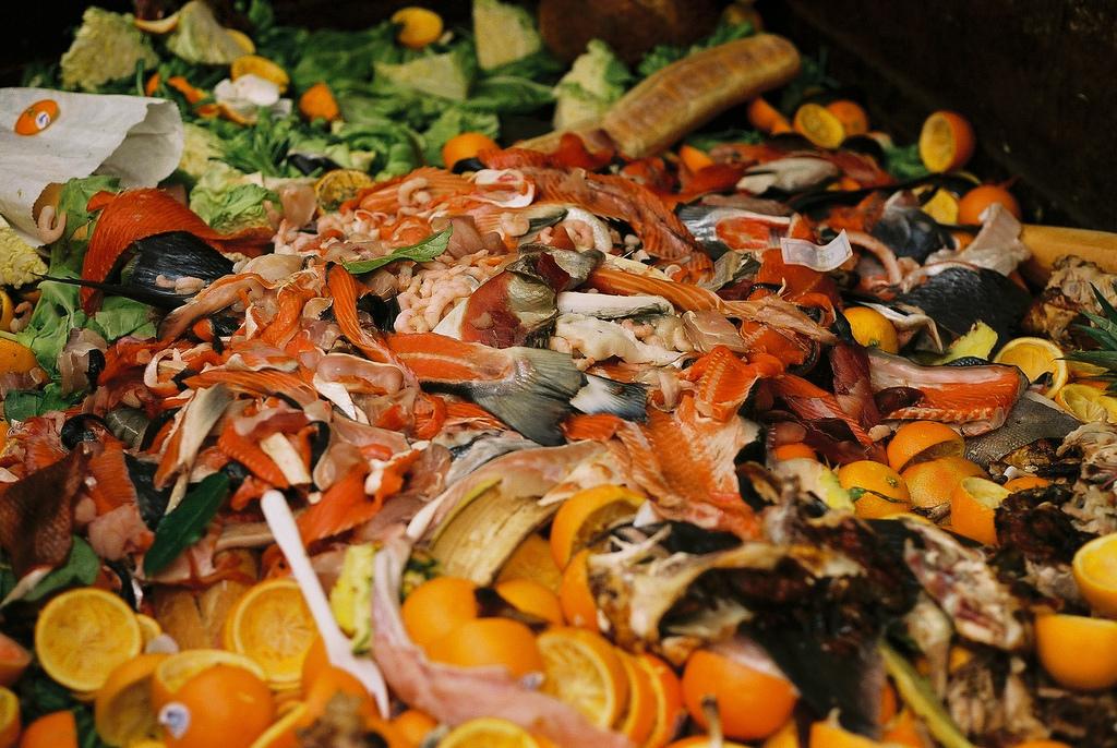 Jaroslav Ertl: Potravinový odpad - jeden z ekologických problémov dneška, foto: flickr.com
