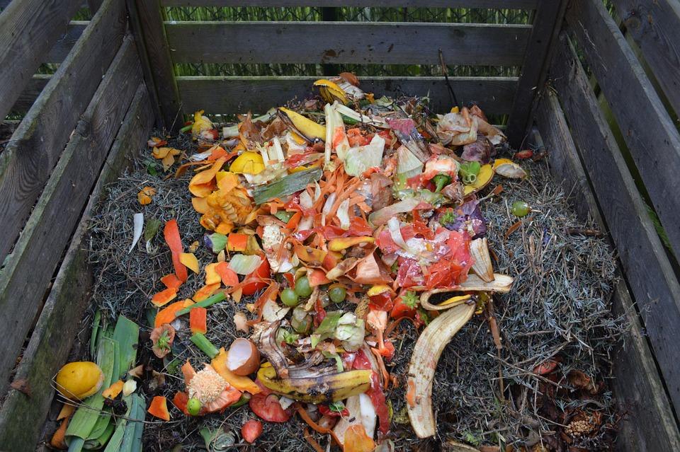ekologické varenie: Čo takto spraviť si vlastný kompost?